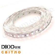 Светодиодная лента Biom Professional 13,5W 120LED 3528 IP20 холодный белый