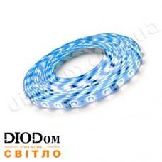 Светодиодная лента Biom Standart 4,8W 60LED 3528 IP65 синий