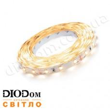 Светодиодная лента Biom Standart 4,8W 60LED 3528 IP65 теплый белый