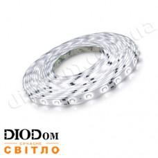 Светодиодная лента Biom Standart 4,8W 60LED 3528 IP65 холодный белый