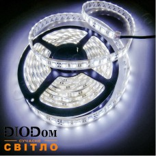 Светодиодная лента Biom Standart 14,4W 60LED 5050 IP65 холодный белый