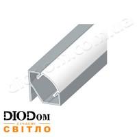 Комплект Biom ПУ17х17 профиль угловой+рассеиватель 2м (накладной алюминиевый профиль+матовый рассеиватель)